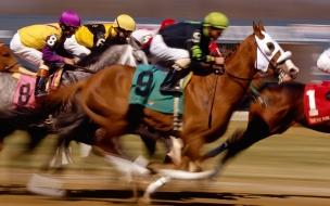 Fondo de pantalla caballos en carrera
