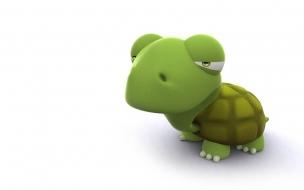 Fondo de pantalla tortuga