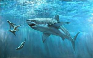 Fondo de pantalla tiburon atacando