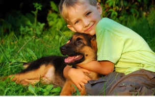Fondo de pantalla niño abrazando a su perro