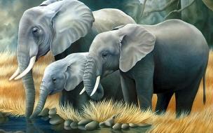 Fondo de pantalla pintura de elefantes