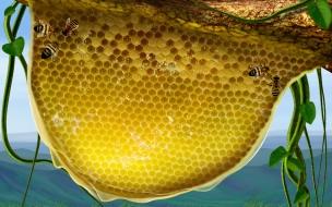 Fondo de pantalla enjambre de abejas