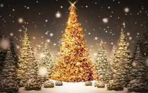 Fondos de Pantalla Arbolito de Navidad Con Estrella