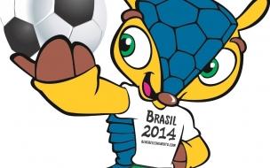 Fuleco Brazil 2014