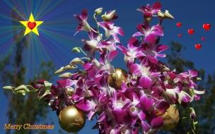 Fondos hd flores lilas con bolitas navideñas