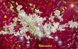 Fondos hd bolitas en flores