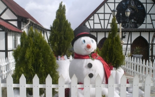 Fondos hd muñeco de nieve junto a pinos