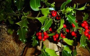Adorno de navidad rama de acebo