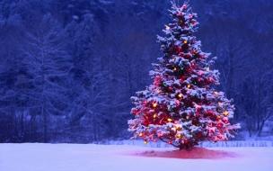 Arbol de navidad alumbrado en la nieve
