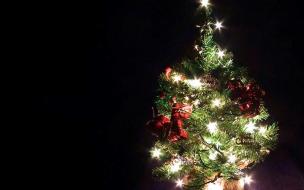 Arbol de navidad pequeño