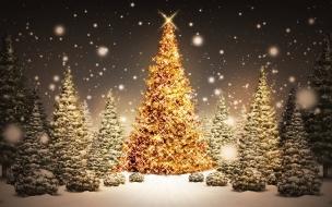 Arboles de navidad hermosos