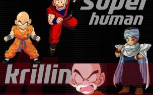 Krillin Super Human