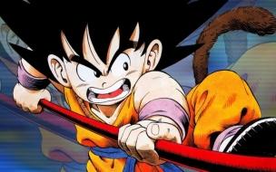 Little Goku
