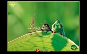 Vida de Insectos 3