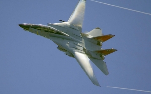 F 14 Tomcat 2
