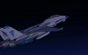 F 14 Tomcat 1