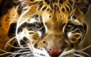Fondo de pantalla leopardo mirada impactante