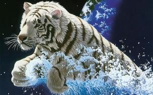 Fondo de pantalla tigre blanco saliendo del agua