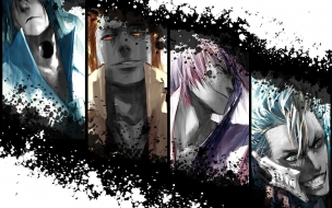 Bleach members