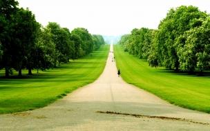 Camino en gran area verde