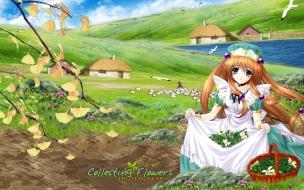 Aoi Kimizuka Collecting Flowers
