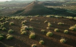 Desierto único