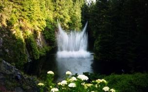 Flores blancas y cascada