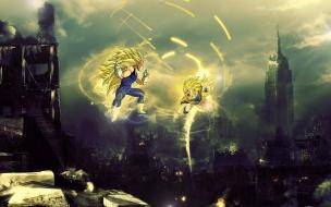 Dragon Ball Fighting