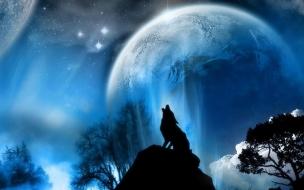 Lobo en luna llena