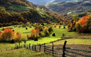 Paisaje campo verde