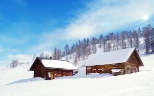 Snow wonderland