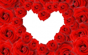 Red roses  love heart wide