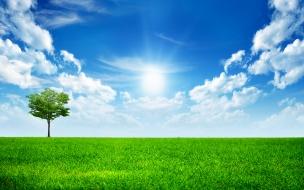Sunny bright day 1