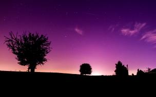 Pinky night