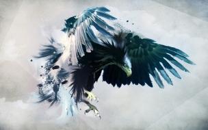 Fondo hd de Aguila
