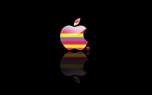 Apple en Lilas y Amarillos
