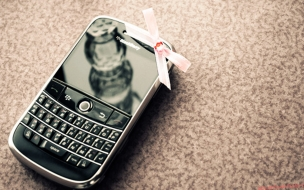 Blackberry Fans Wallpaper