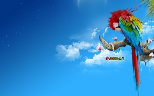 Fondo de Pantalla Papagayo
