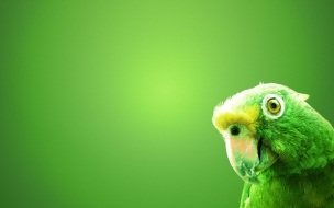 Fondo Loro Verde