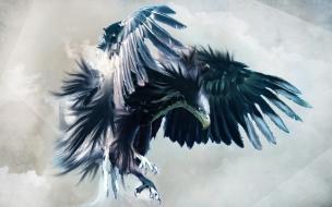 Aguila en vuelo