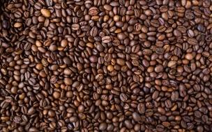 Granitos de Cafe - Fondo de pantalla para cafetería