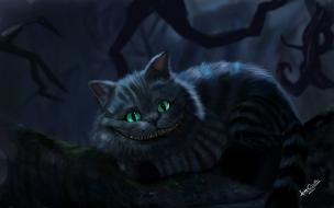 Fondo de pantalla gato chistoso