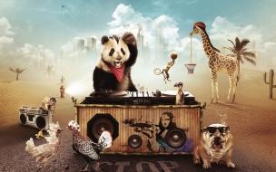 Fondo de pantalla oso panda musico