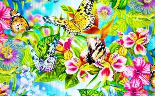 Pintura de flores y mariposas