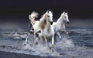 Tres Caballos Blancos