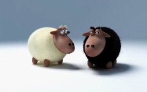 Fondo de pantalla ovejas mirandose