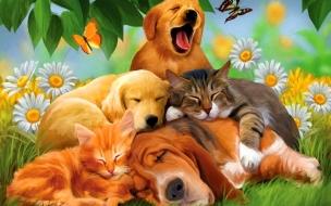 Fondo de pantalla pintura de perros y gatos