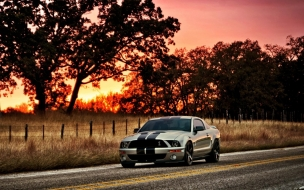 Ford Shelby HDR wallpaper