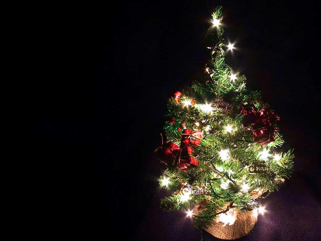 Arbol de navidad peque o 1024x768 fondo de pantalla 1710 for Arbol de navidad pequeno
