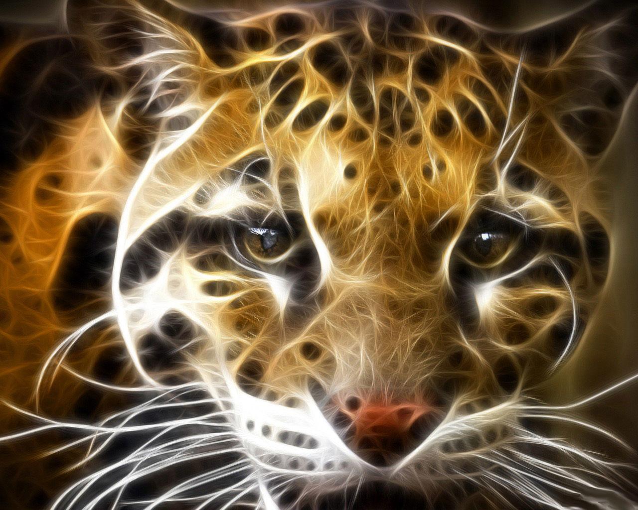 Animales Felino Leopardos Fondo De Pantalla Fondos De: Fondo De Pantalla Leopardo Mirada Impactante 1280x1024